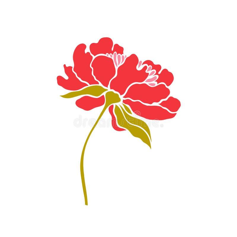 Paeonia Pivoine Fleur rouge dans une copie simple illustration libre de droits