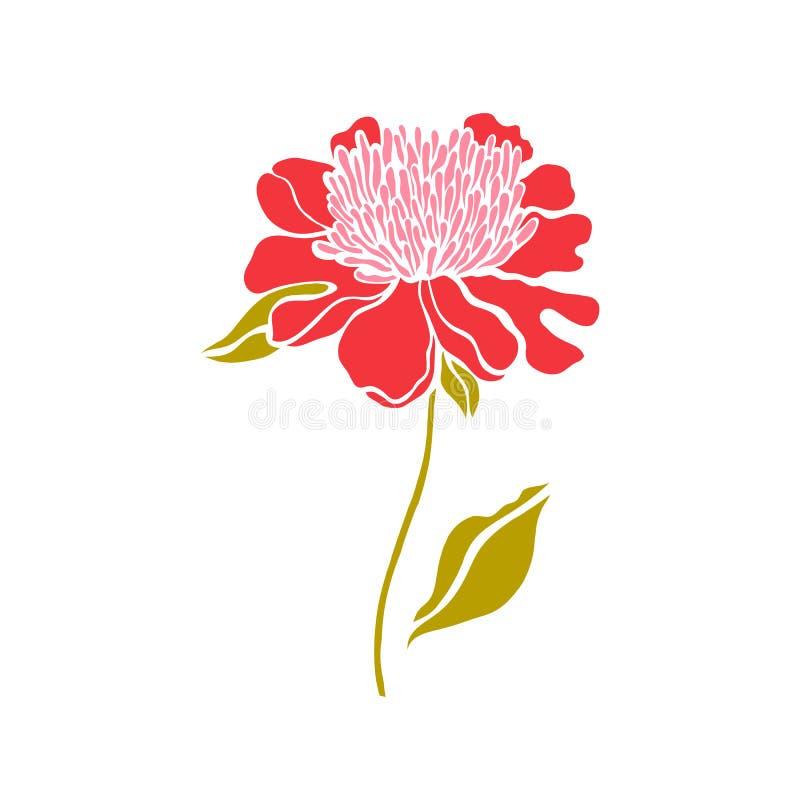 Paeonia Pivoine Fleur rouge dans une copie simple illustration de vecteur