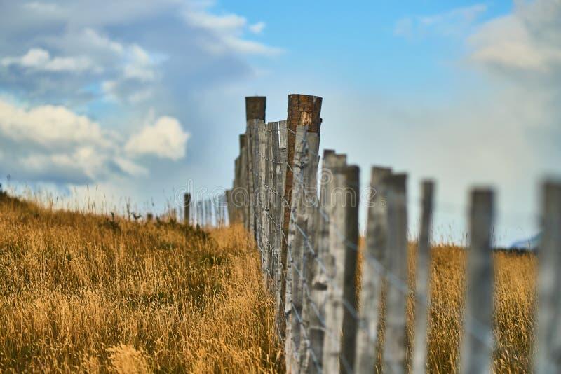 Paesaggi accanto ad un piccolo stabilimento sulla Terra del Fuoco vicino a Ushuaia Patagonia dell'Argentina in autunno immagini stock libere da diritti
