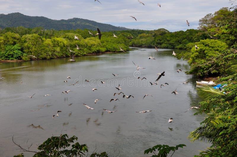 Paesaggi della penisola di Nicoya, Costa Rica fotografie stock