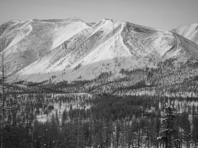 Paesaggi di inverno immagini stock libere da diritti