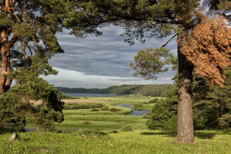 Paesaggi naturali in un posto storico pushkinskiye for Foto paesaggi naturali gratis