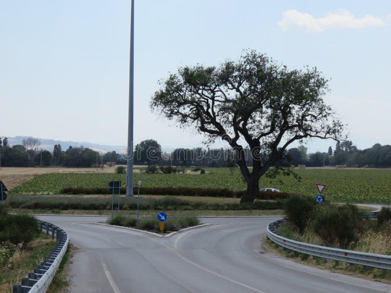 Paesaggio стоковая фотография