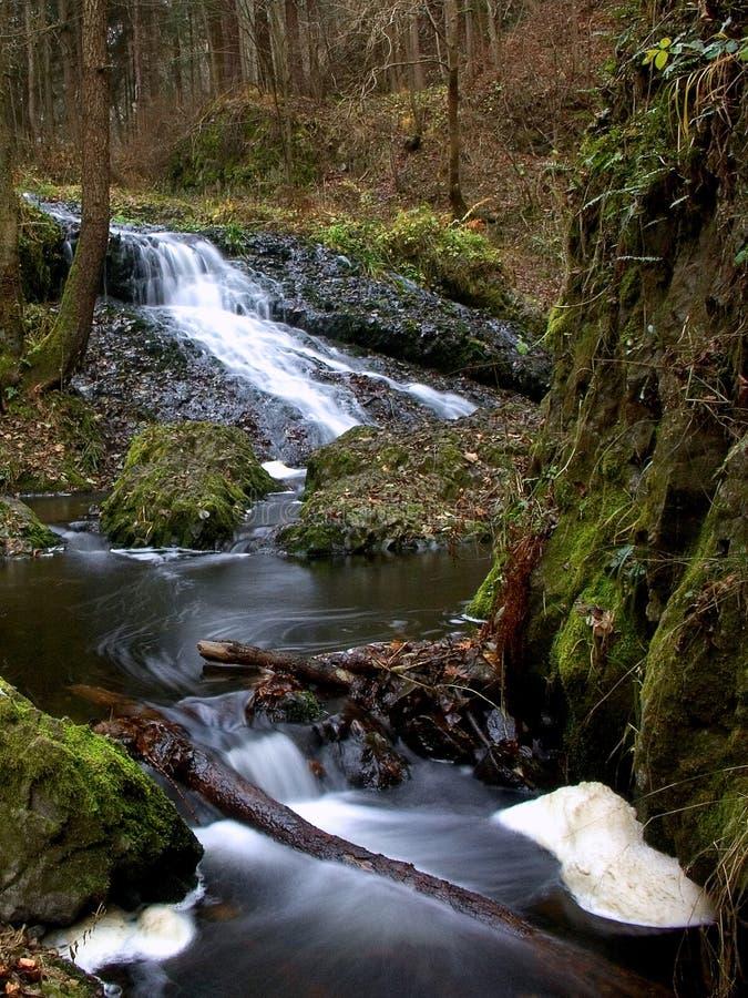 Download Paesaggio fotografia stock. Immagine di alberi, vita, autunno - 3131450
