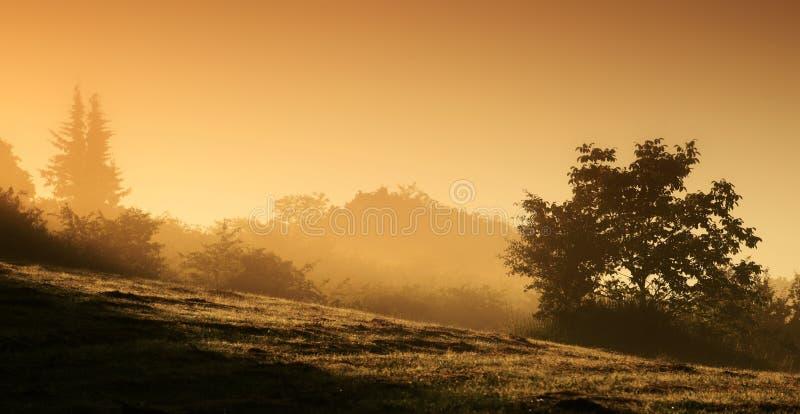 Paesaggio ad alba fotografia stock libera da diritti