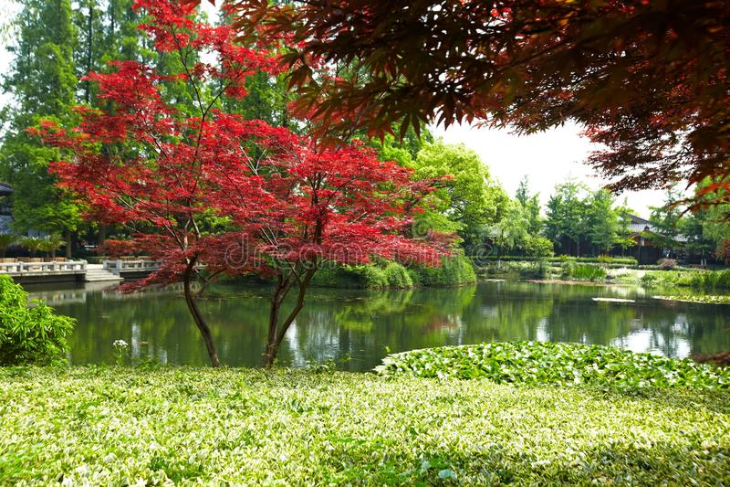 Paesaggio ad ovest del lago hangzhou fotografia stock libera da diritti