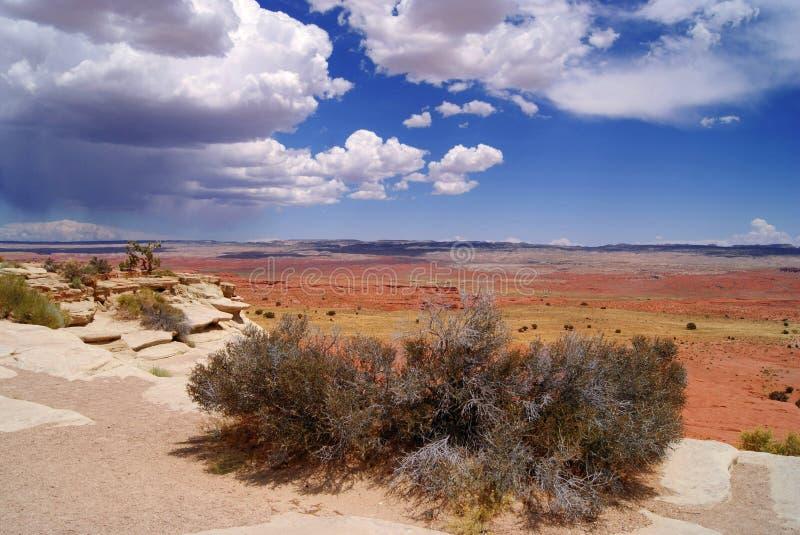 Paesaggio ad ovest selvaggio fotografia stock libera da diritti