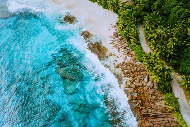 Paesaggio aereo del fuco dell'isola delle Seychelles Mahe della spiaggia sabbiosa di paradiso della linea costiera con le palme e immagine stock libera da diritti