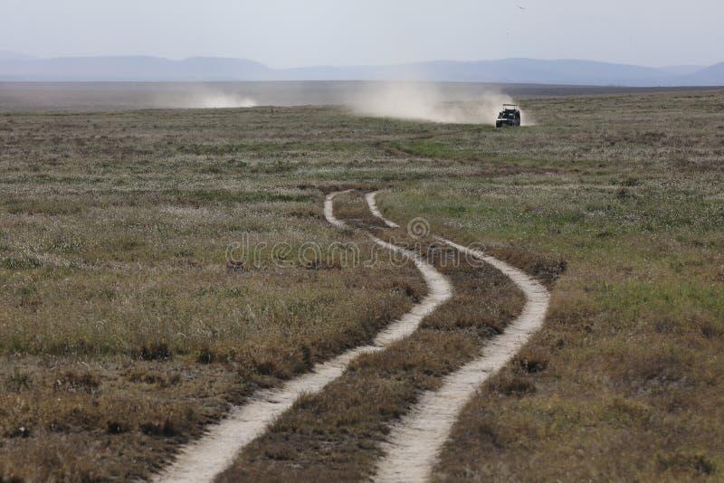 Paesaggio africano mentre nel safari immagine stock libera da diritti
