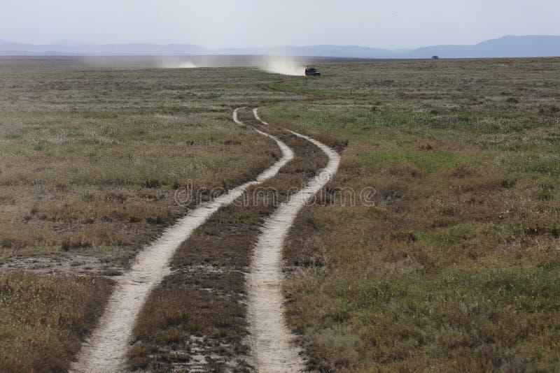 Paesaggio africano mentre nel safari fotografia stock libera da diritti