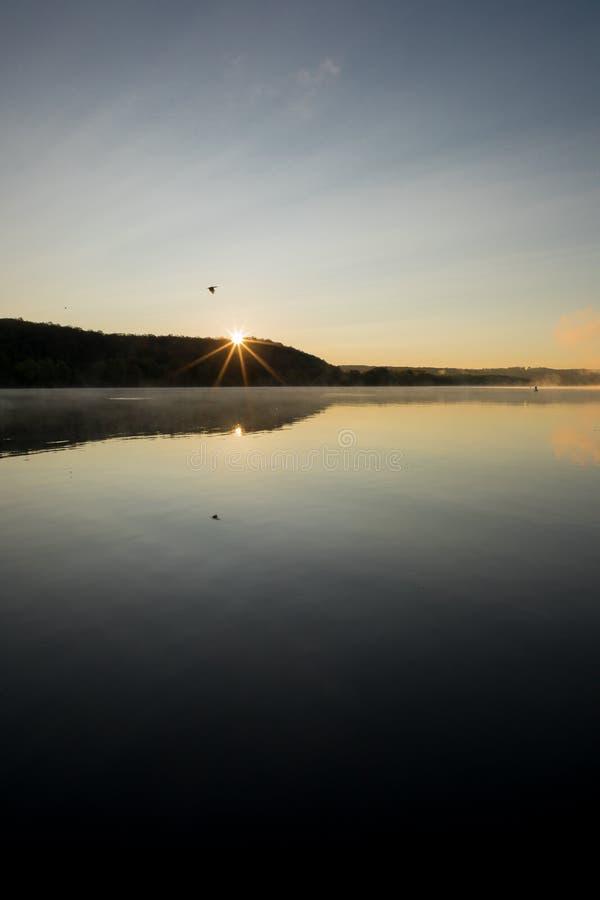 Paesaggio all'alba con acqua tranquilla, alba, l'uccello di volo e la riflessione dell'uccello immagini stock
