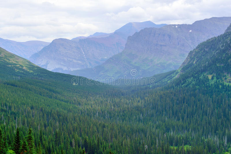 Download Paesaggio Alpino Del Glacier National Park Fotografia Stock - Immagine di fiume, backpacking: 55357898