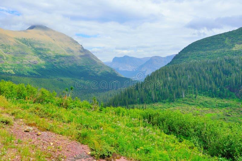 Download Paesaggio Alpino Del Glacier National Park Immagine Stock - Immagine di lago, geologico: 55357913