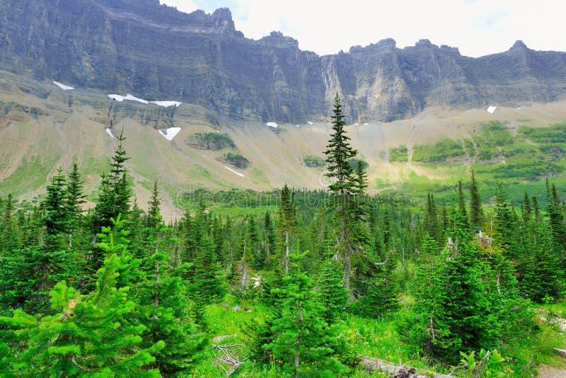 Download Paesaggio Alpino Del Glacier National Park Fotografia Stock - Immagine di famiglia, accampamento: 55358116
