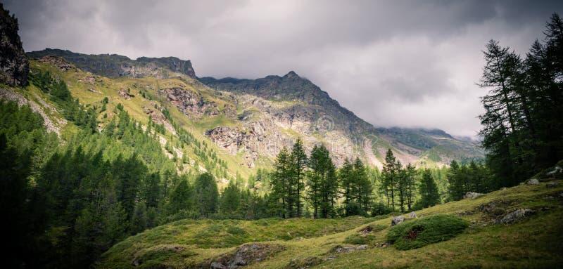 Paesaggio alpino tradizionale della valle delle alpi italiane fotografia stock libera da diritti