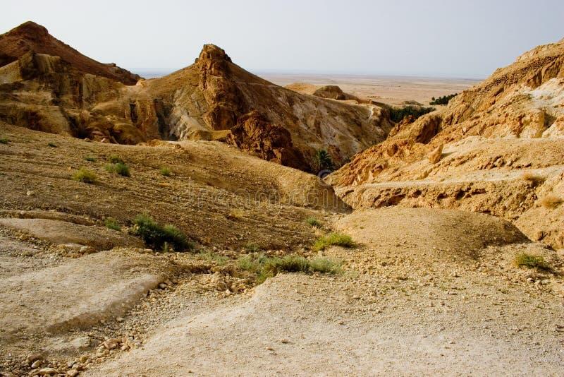 Paesaggio arido fotografie stock libere da diritti
