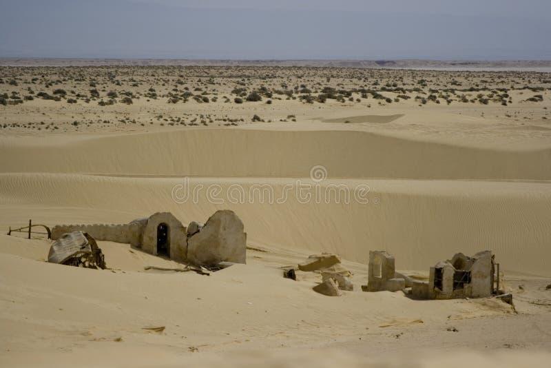 Paesaggio arido fotografia stock