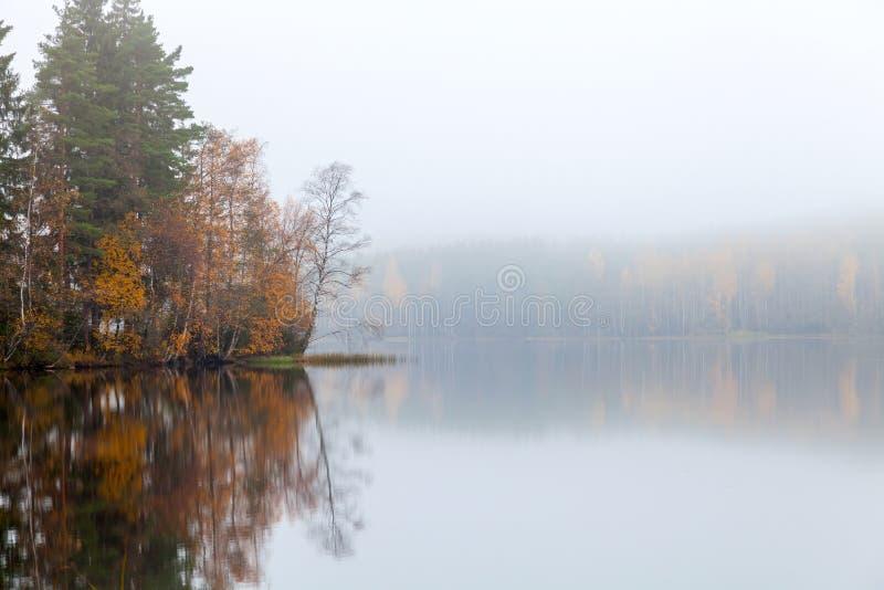 Paesaggio autunnale con i threes e la nebbia costieri fotografia stock libera da diritti