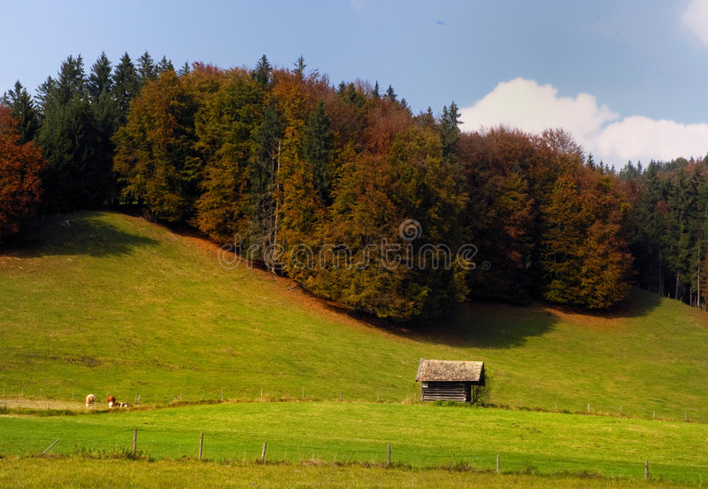 Paesaggio bavarese in autunno fotografia stock libera da diritti