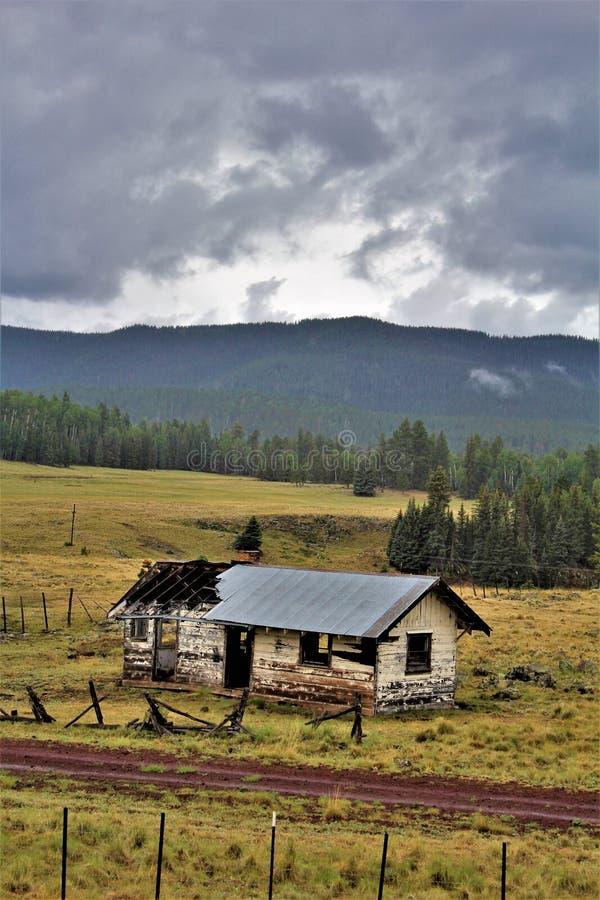 Paesaggio bianco di prenotazione di Apache delle montagne, Arizona, Stati Uniti immagini stock libere da diritti