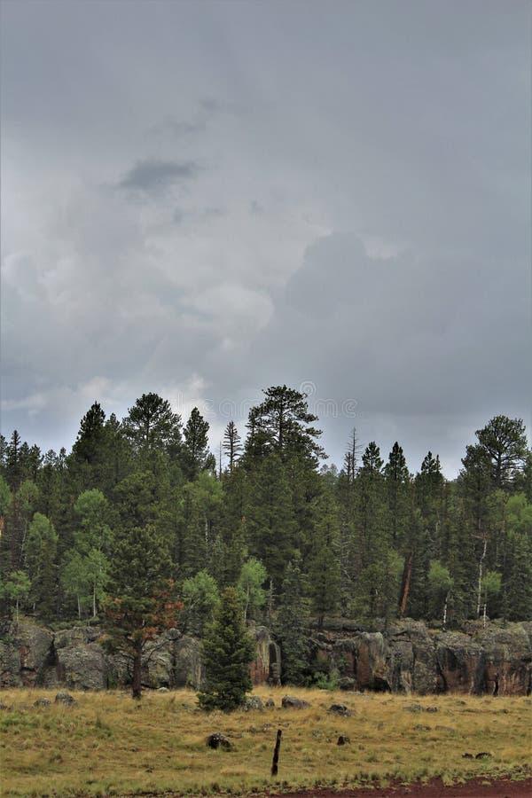 Paesaggio bianco di prenotazione di Apache delle montagne, Arizona, Stati Uniti fotografie stock libere da diritti