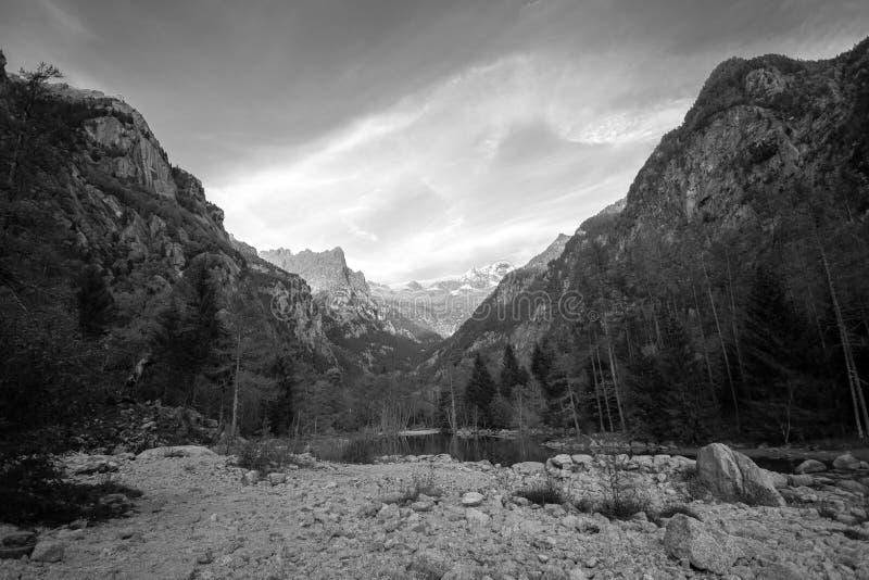 Paesaggio in bianco e nero della montagna di Val Masino fotografia stock libera da diritti