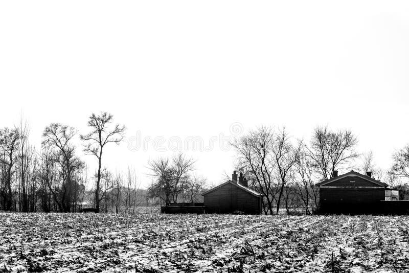 Paesaggio in bianco e nero di inverno con gli alberi e la foresta, albero asciutto senza foglia con la casa e la neve coperta a t fotografie stock libere da diritti