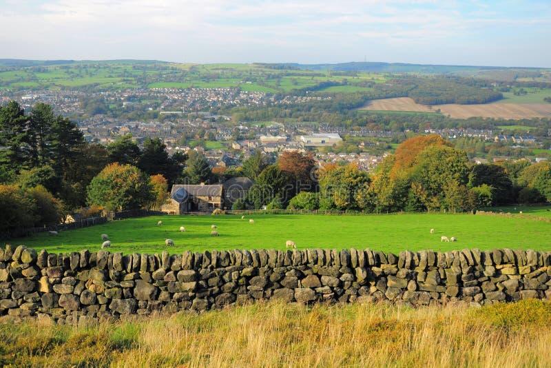 Paesaggio britannico della campagna: azienda agricola e pecore