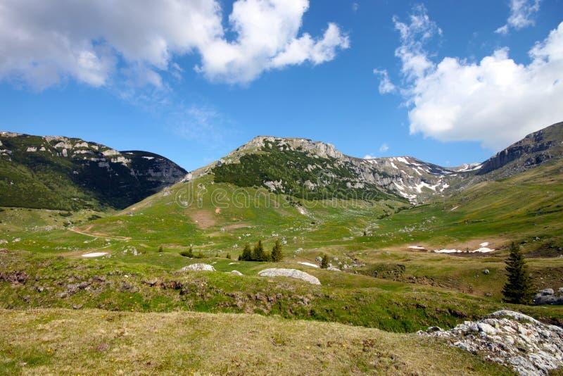 Download Paesaggio in Carpathians immagine stock. Immagine di attivo - 55351355