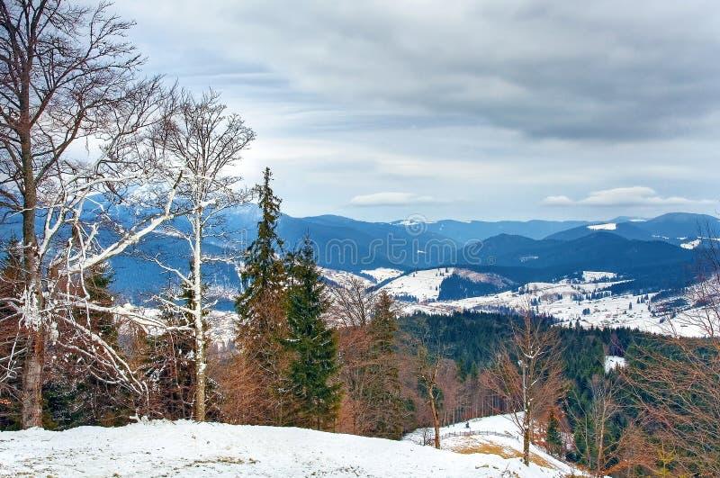 Paesaggio carpatico delle montagne di inverno fotografie stock libere da diritti