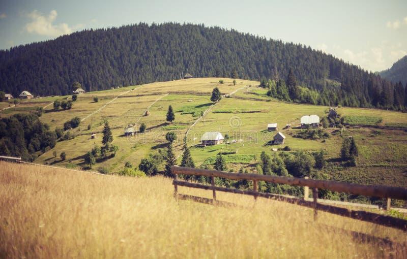 Paesaggio carpatico, Ucraina, radura di Synevyrska fotografia stock libera da diritti