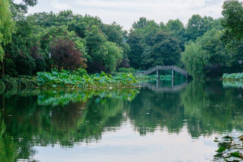 Paesaggio con gli alberi ed il ponte e riflessioni in acqua vicino al lago ad ovest, Hangzhou, Cina fotografie stock libere da diritti