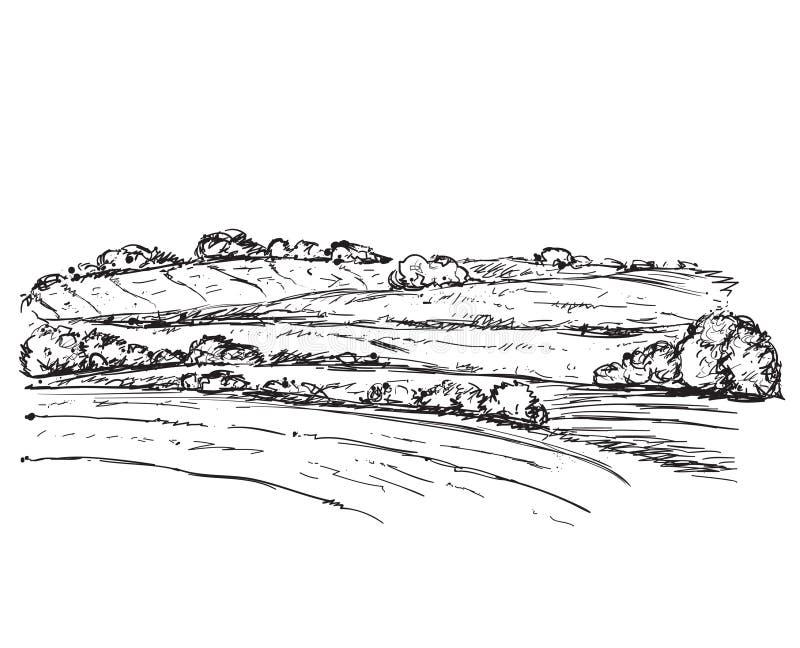 Paesaggio con i campi illustrazione di stock