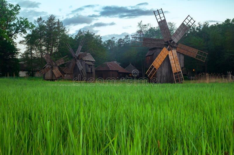 Paesaggio con i mulini di vento immagini stock libere da diritti