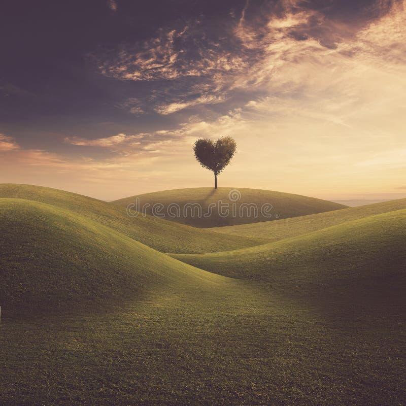Paesaggio con il cuore dell'albero immagine stock