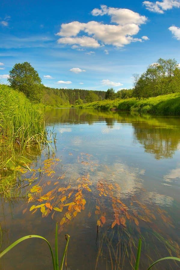 Paesaggio con il fiume fotografia stock
