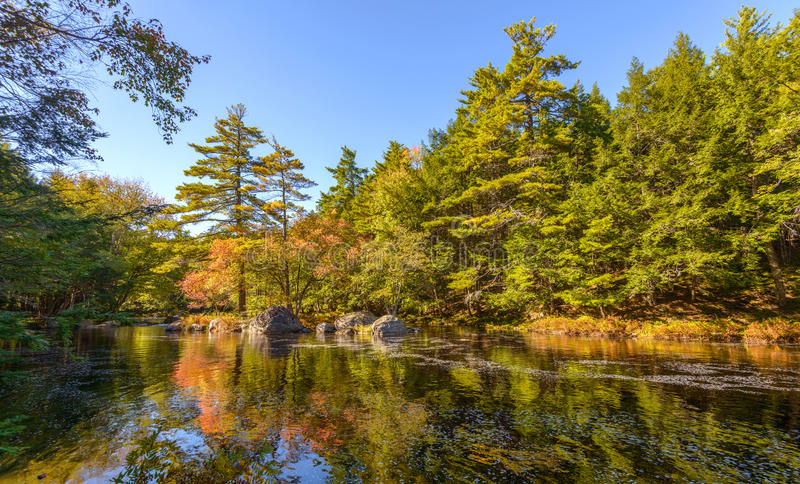 Paesaggio con il fiume della foresta in autunno fotografia stock