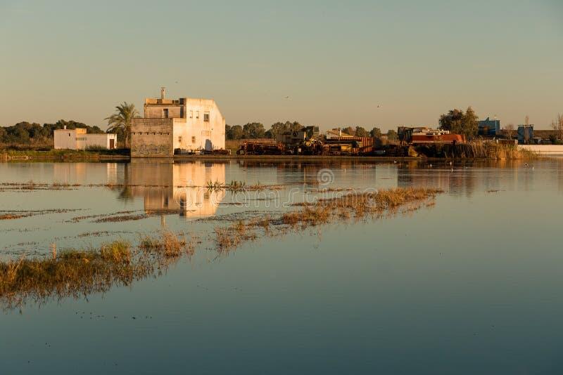 Paesaggio con la fattoria circondata dalle piantagioni del riso e la sua riflessione nell'acqua nella laguna di Albufera, in parc fotografia stock