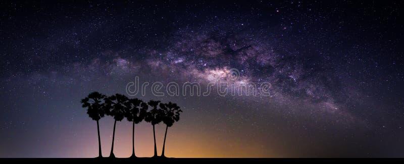 Paesaggio con la galassia della Via Lattea Cielo notturno con le stelle e il silhou immagini stock libere da diritti