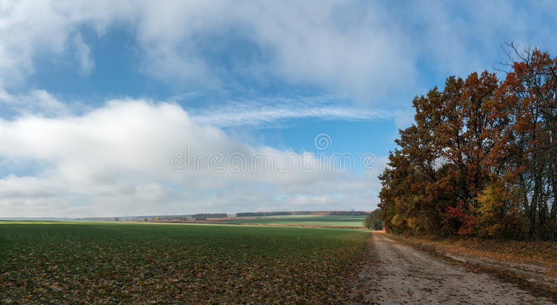 Paesaggio con la strada sul campo fotografie stock libere da diritti