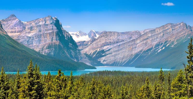 Paesaggio con le montagne rocciose in Alberta, Canada immagine stock libera da diritti