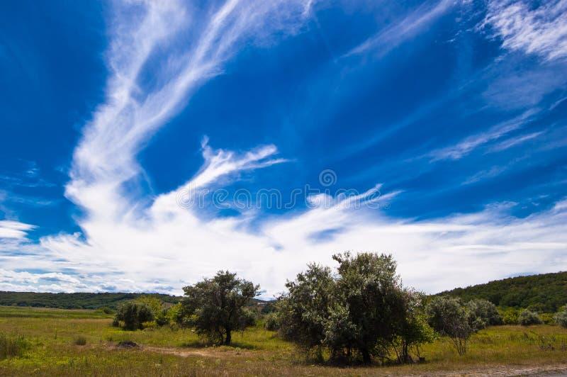 Paesaggio con le nuvole bizzarre capricciose immagine stock libera da diritti