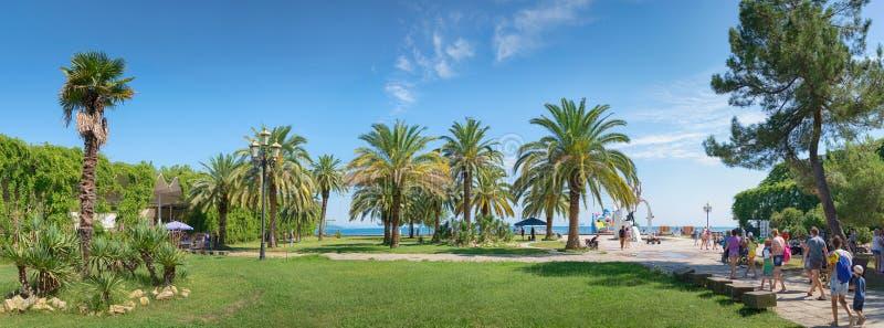 Paesaggio con le palme Pitsunda, Abhasia immagini stock libere da diritti