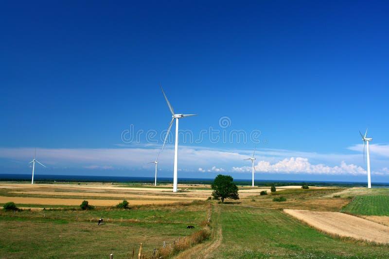 Paesaggio con le turbine di vento immagini stock