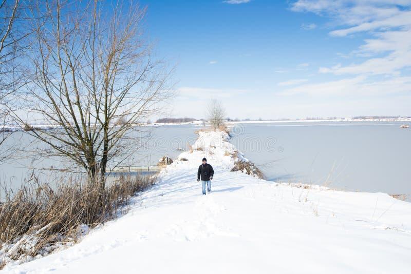 Paesaggio con neve fotografia stock libera da diritti