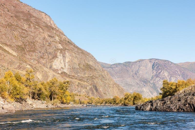 Paesaggio con un fiume della montagna fotografia stock libera da diritti