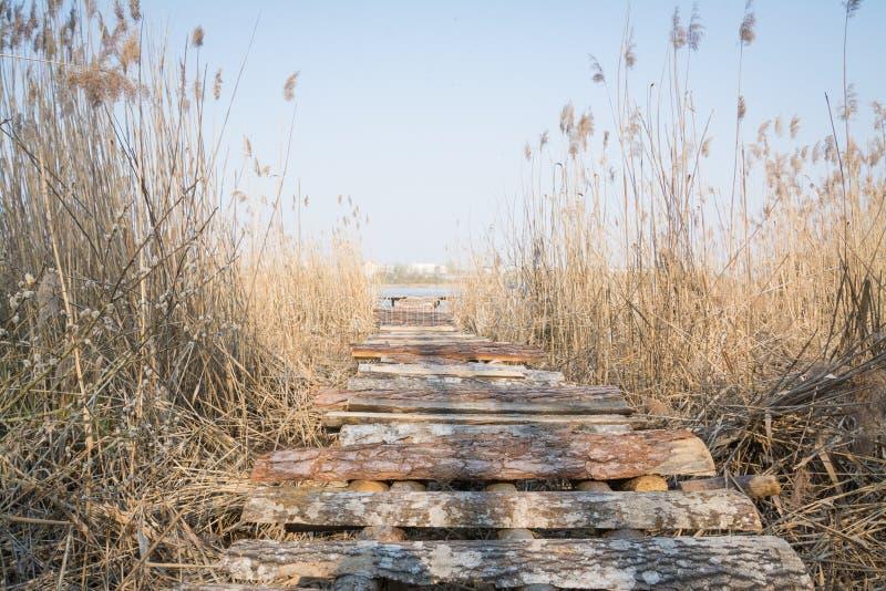 Paesaggio con un lago e un vecchio ponte fotografia stock libera da diritti