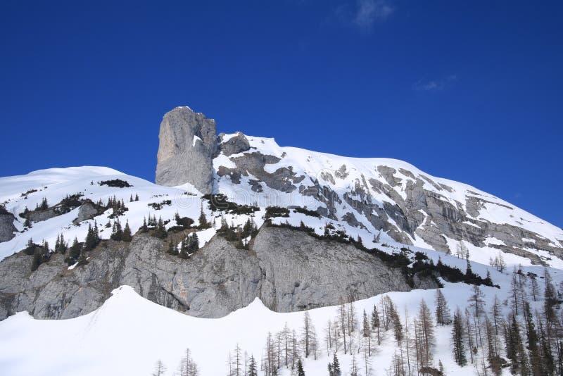 Paesaggio con una montagna, Austria fotografie stock