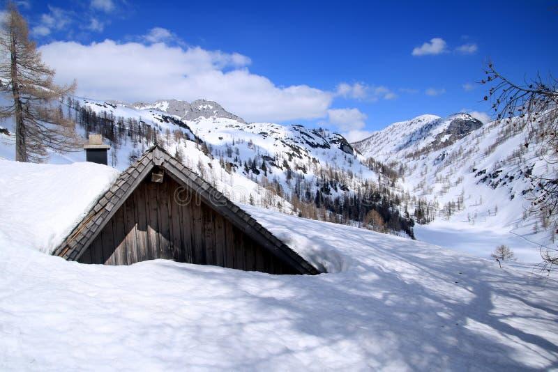 Paesaggio con una montagna, Austria fotografia stock libera da diritti