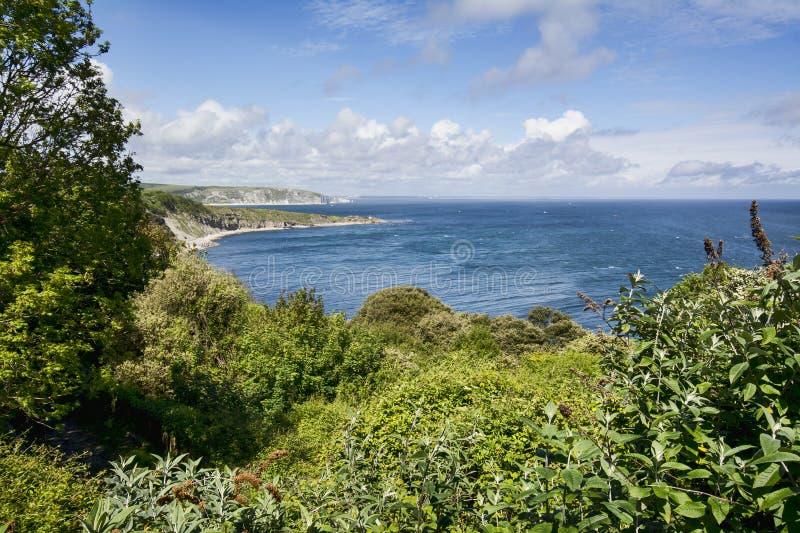 Paesaggio costiero fotografia stock libera da diritti